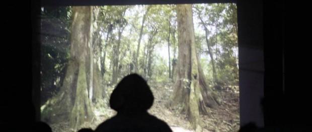 pemutaran film mertidesa Desa Pentur tahun 2013